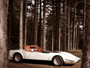 alfa_romeo_p33_roadster_5